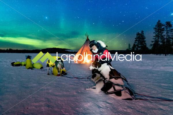 Norrsken :Northern lights - Lappland Media